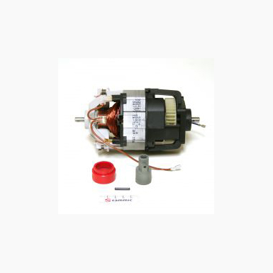 Motor Set TRBM 350w 4039021 (Now 4039027)